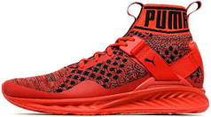 Женские кроссовки Puma Ignite EvoKnit Red