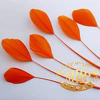 Перья-антенки 15-20см, цвет Оранжевый*1шт