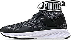 Женские кроссовки Puma Ignite EvoKnit Black/White