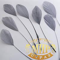 Перья -антенки 15-20см, цвет серый, цена за 1шт
