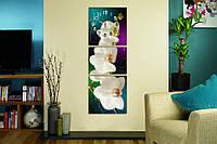 Часы-модульная картина 281 Белая Орхидея
