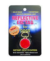 Брелок-адресник Coastal ID Tag для собак светоотражающий