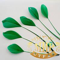 Перья -антенки 15-20см, цвет зеленый*1шт