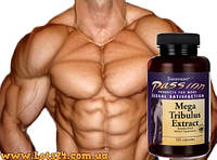 Трибулус (120 капсул) - повышает тестостерон, анаболик Swanson Tribulus + программа тренировок