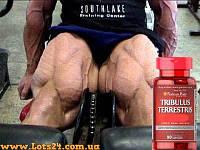 Трибулус Террестрис (90 капсул) - повышает тестостерон + программа тренировок