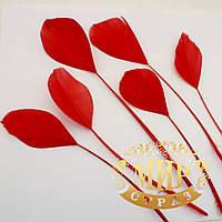 Перья -антенки 15-20см, цвет Red, цена за 1шт