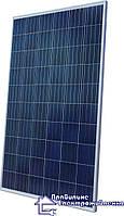 Полікристалічна сонячна батарея AMERISOLAR AS-6P30-260, 4bb, 260W