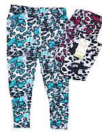 Лосины для девочек, Nice Wear, размеры 3/4,5/6  лет, арт. GT 705-4