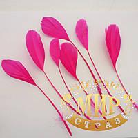 Перья-антенки 15-20см, цвет малиновый, цена за 1шт