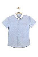 Мужская Рубашка 100% хлопок Арт.68817(голубая)