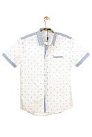 Мужская Рубашка 100% хлопок Арт.68817(белая)