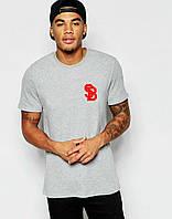 Мужская Футболка Nike SB серого цвета с красным логотипом