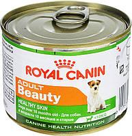 ROYAL CANIN ADULT BEAUTY (ЭДАЛТ БЬЮТИ) влажный корм для собак до 8 лет 0,195КГ