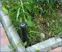 Спринклеры для автоматического дождевого полива