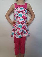 Комплект трикотажный туника+бриджи для девочки р.98-128 Arino