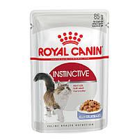 ROYAL CANIN INSTINCTIVE in jelly консервы для кошек (кусочки в желе) 0,085КГ