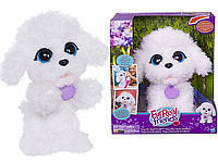 Интерактивный игривый щенок Пудель Hasbro