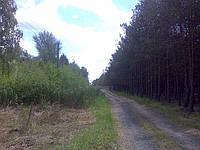 Участок в Процеве с выходом на воду и с лесом, фото 1