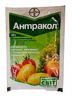 Фунгицид Антракол 70 WG, в.г. 100 граммов Bayer
