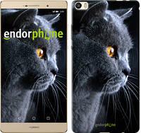 "Чехол на Huawei P8 Max Красивый кот ""3038u-371"""