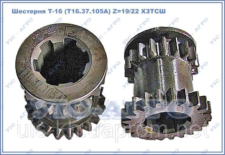 Шестерня Т-16 (Т16.37.105А) ведущая  2 и 3 передач Z=19/22 ХЗТСШ