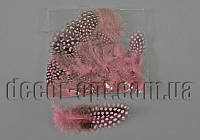 Перья розовые с горохом 5-10 см ~50 шт