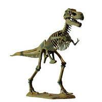 Dino Horizons Большая модель скелета Тираннозавра (D501)