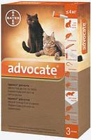 Bayer Advocate для кошек до 4 кг, 1 уп.