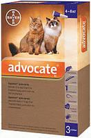 Bayer Advocate для кошек от 4 до 8 кг, 1 пипетка
