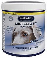 31202004 Dr.Clauder's Mineral & Fit Bonefort для формирования костной ткани, 500 гр