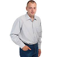 Рубашка мужская батал Boscado ВТТ1234