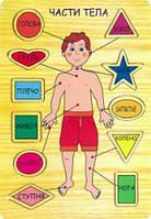 Рамка вкладыш Части тела Мир деревянных игрушек (Р 39)