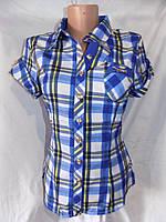 Женская рубашка летний сезон