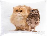 Подушка декоративная Коты 40*50 см