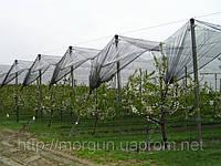 Сетка затеняющая / Сітка затіняюча 80% 1,6м*50м, 30м.кв. (на 7-8лет)