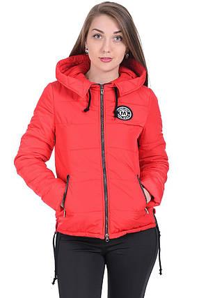 Куртка демисезонная женская короткая с капюшоном, фото 2