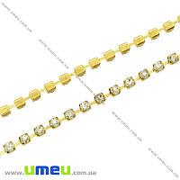 Стразовая цепь SS8 (2,4 мм), Золото, Стразы стеклянные белые, 10 см (ZEP-007766)
