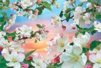 Фотообои, Яблони в цвету 16 листов,  196см Х 280см