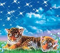 Фотообои, Тигрята 6 листов, 140х145см