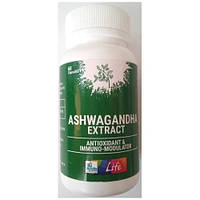 Ашвагандха, Ашвагандра Екстракт / Ashwagandha extract, Apollo / 60 kap