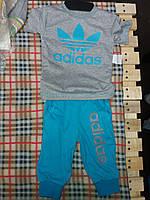 Летний детский костюм Адидас: футболочка и бриджи. Цвет серый с голубым