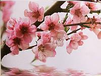 Фотообои, весна, цветы, сакура, цветущее дерево, ПРЕСТИЖ №25 размер 272смХ196см