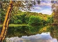 Фотообои, природа, речка, лес,  ПРЕСТИЖ №24 размер 272смХ196см