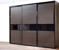 Шкаф-купе в темном профиле с вставками черными из стекла, фото 1