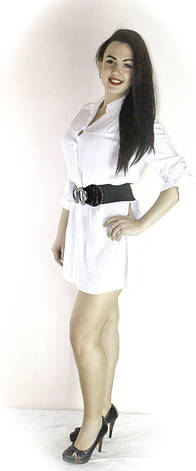 Рубашка женская реплика ABERCROMBI, фото 2