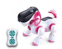 Радиоуправляемый кибер пес КИ-КИ