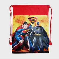 Детская сумка-рюкзак для сменной обуви Spider и Batman