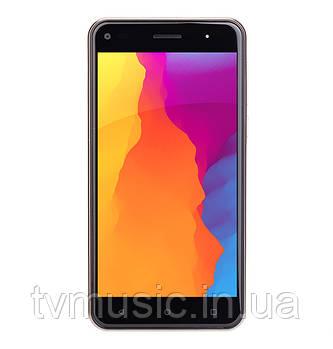 Мобильный телефон Nomi i5030 EVO X Gold
