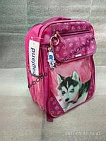 """Рюкзак на 1-4 класс """"Отличник"""" ТМ Bagland, для девочки """"Хаски"""""""