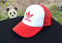 Кепка красная Adidas originals (много цветов)